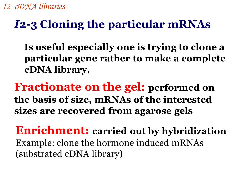 I2-3 Cloning the particular mRNAs Is useful especially one is trying to clone a particular gene rather to make a complete cDNA library.