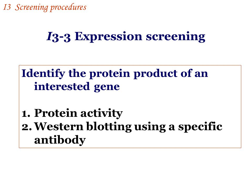 Identify the protein product of an interested gene 1.Protein activity 2.Western blotting using a specific antibody I3 Screening procedures I3-3 Expression screening