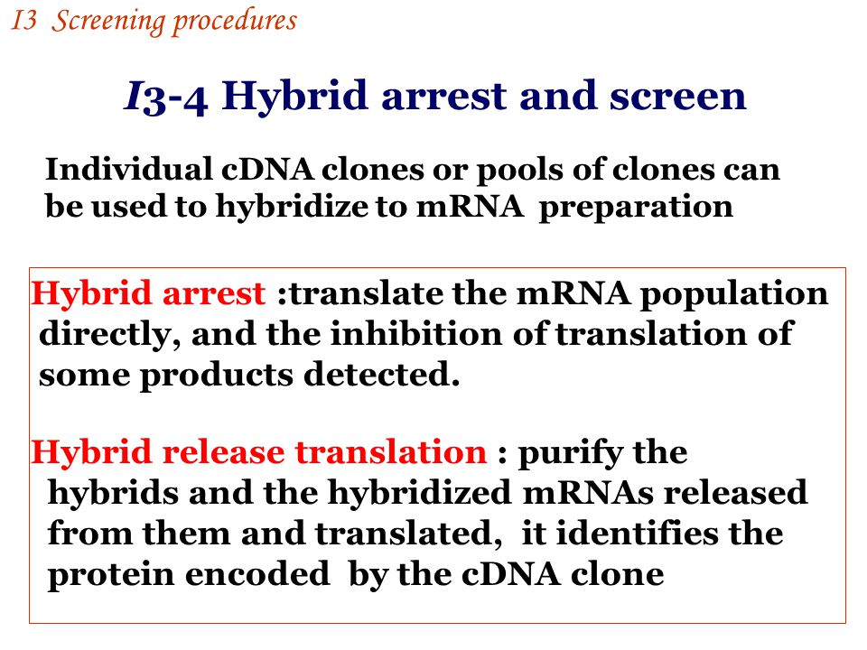 I3-4 Hybrid arrest and screen Individual cDNA clones or pools of clones can be used to hybridize to mRNA preparation Hybrid arrest :translate the mRNA population directly, and the inhibition of translation of some products detected.
