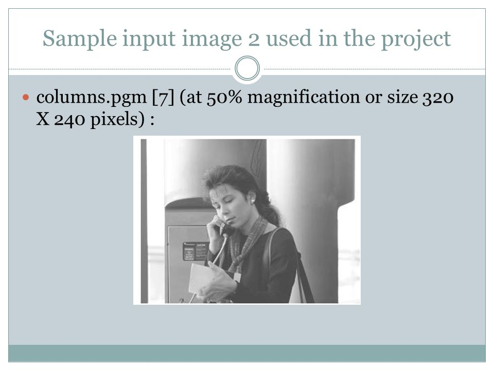 Sample input image 2 used in the project columns.pgm [7] (at 50% magnification or size 320 X 240 pixels) :