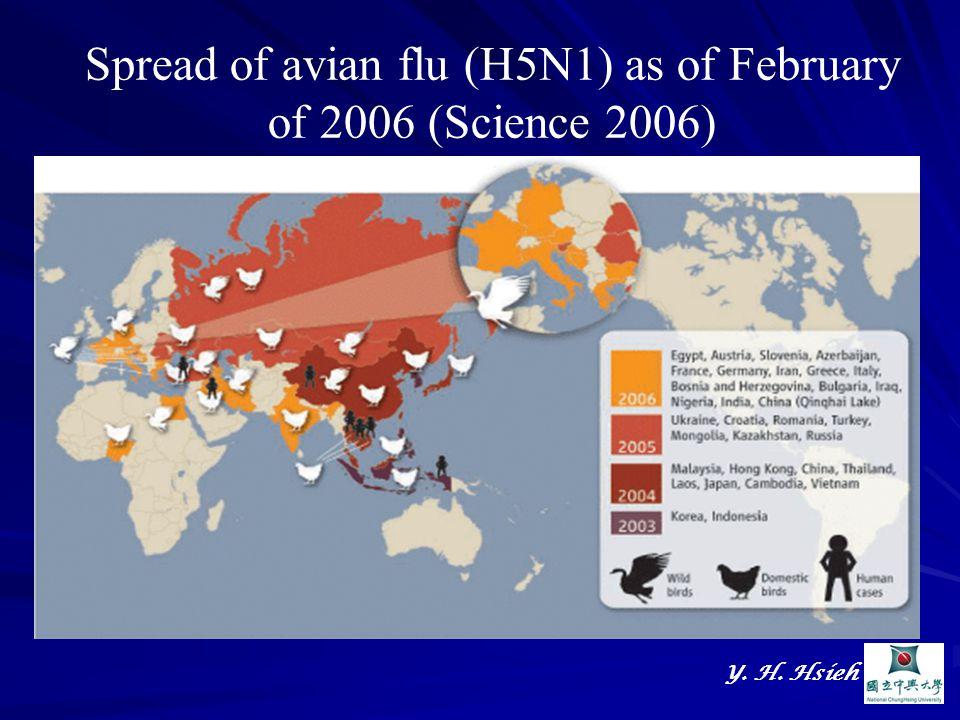 Y. H. Hsieh Spread of avian flu (H5N1) as of February of 2006 (Science 2006)