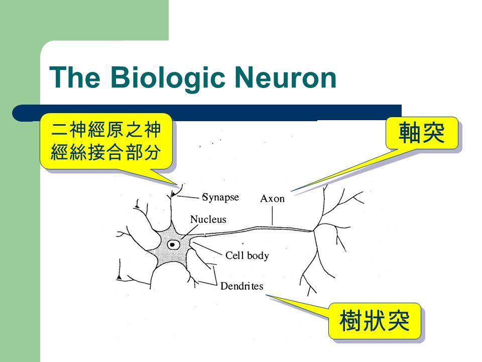 樹狀突 軸突 二神經原之神 經絲接合部分