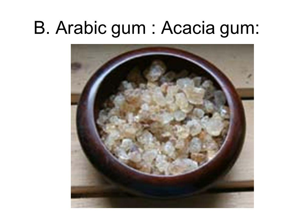 B. Arabic gum : Acacia gum: