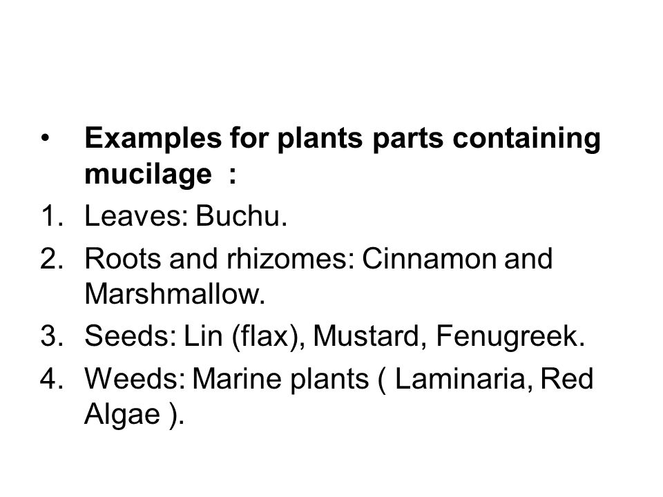Examples for plants parts containing mucilage : 1.Leaves: Buchu.