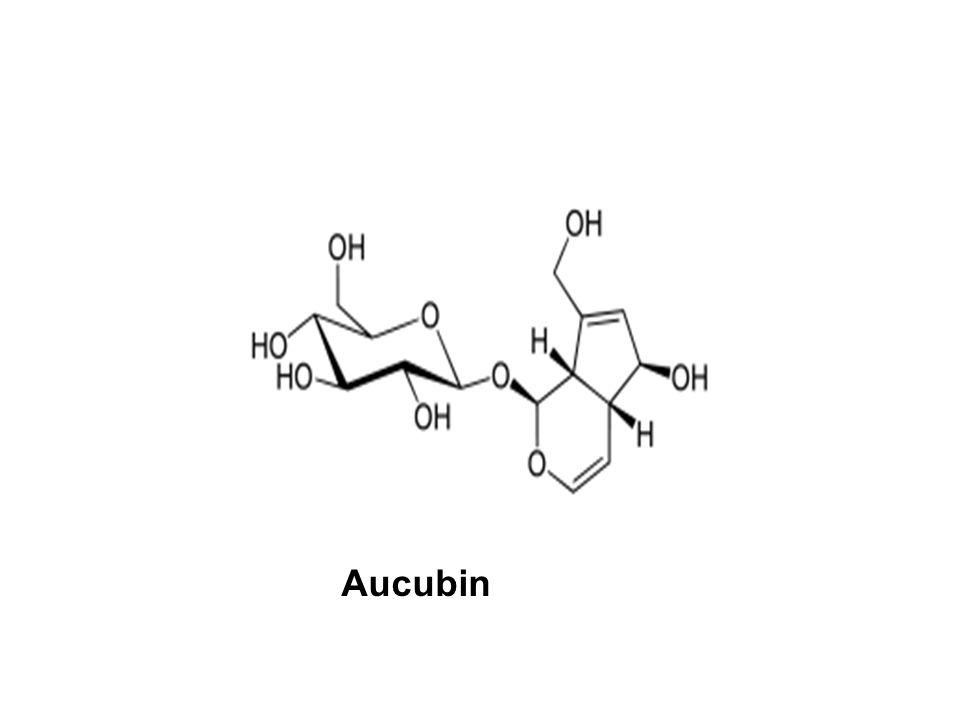 Aucubin