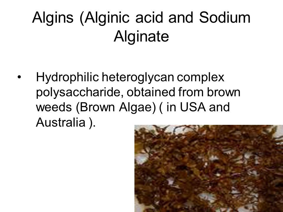 Algins (Alginic acid and Sodium Alginate Hydrophilic heteroglycan complex polysaccharide, obtained from brown weeds (Brown Algae) ( in USA and Australia ).