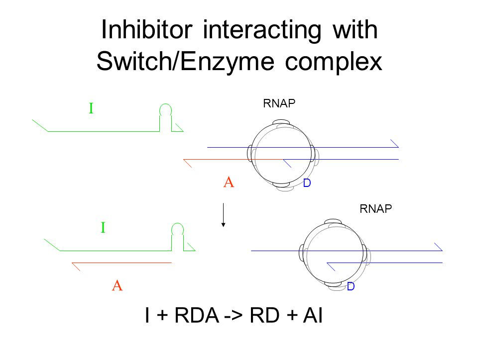 Inhibitor interacting with Switch/Enzyme complex D A I RNAP I + RDA -> RD + AI I A D RNAP