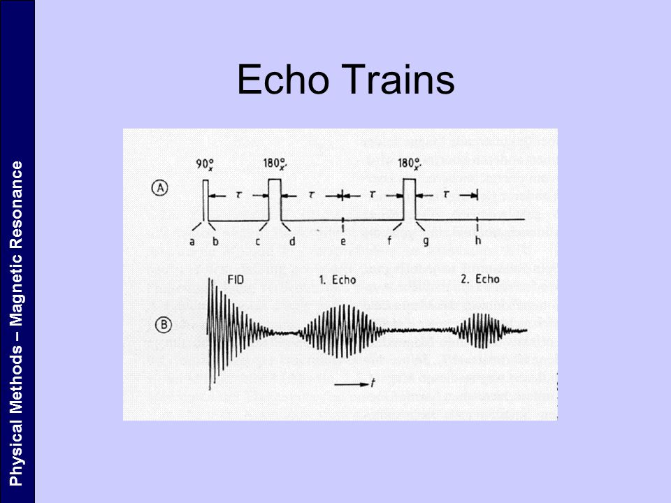 Physical Methods – Magnetic Resonance Echo Trains