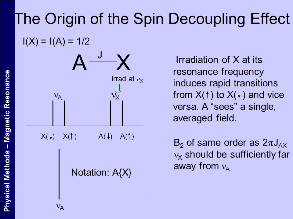 The Origin of the Spin Decoupling Effect Physical Methods – Magnetic Resonance A X J I(X) = I(A) = 1/2 X( ) A A( ) X Irradiation of X at its resonance frequency induces rapid transitions from X( ) to X( ) and vice versa.