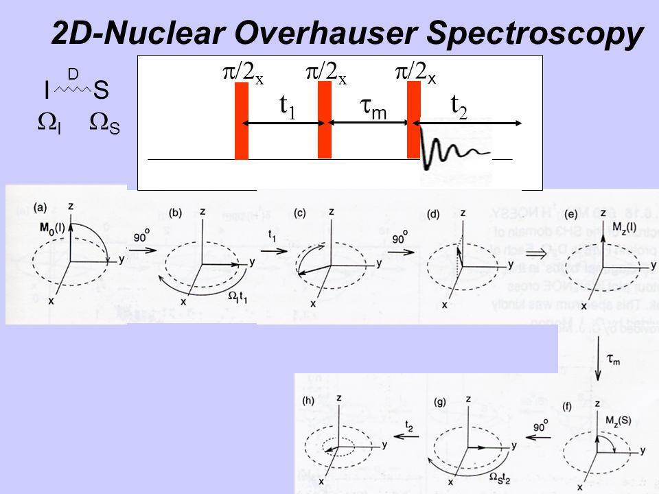 2D-Nuclear Overhauser Spectroscopy  x t1t1 mm t2t2 t1t1 mm t2t2 I S D II SS