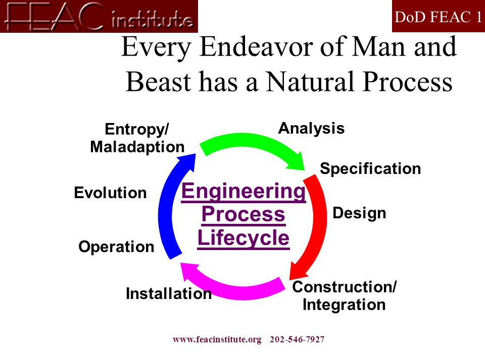 DoD FEAC 1 www.feacinstitute.org 202-546-7927 Every Endeavor of Man and Beast has a Natural Process Analysis Specification Design Construction/ Integr
