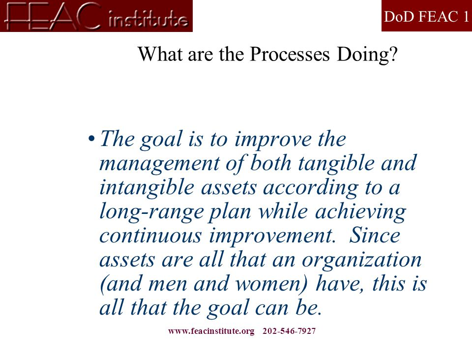 DoD FEAC 1 www.feacinstitute.org 202-546-7927 What are the Processes Doing? The goal is to improve the management of both tangible and intangible asse