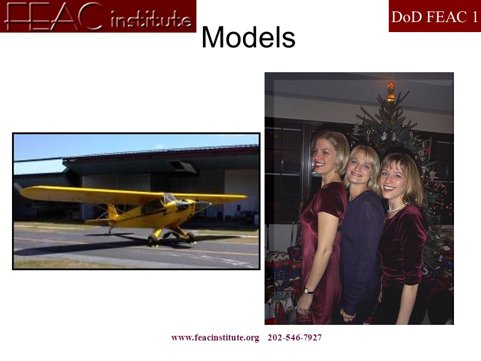 DoD FEAC 1 www.feacinstitute.org 202-546-7927 Models