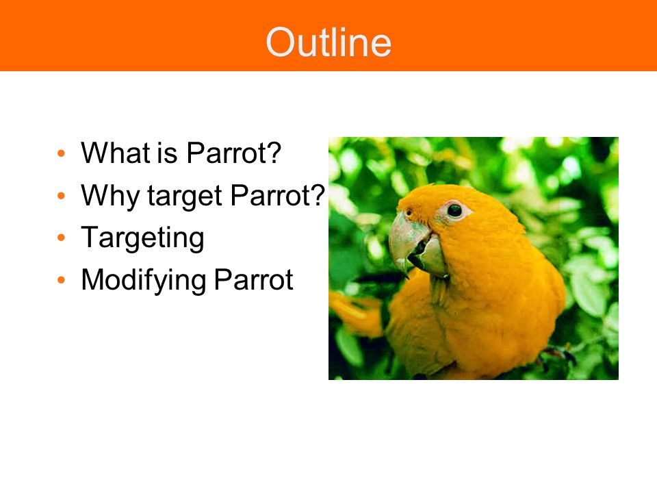 Outline What is Parrot Why target Parrot Targeting Modifying Parrot