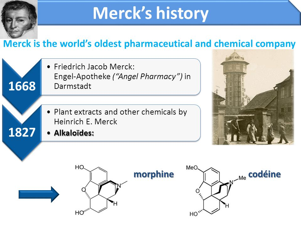 35 Strategy of Merck Serono Strategic focus Enhance the productivity of our drug discovery activities with innovative and emerging technologies Expand upon our Multiple Sclerosis franchise to enter other neurodegenerative disease areas Expand our pipeline in Rheumatology with complementary product opportunities offering a broad indication potential