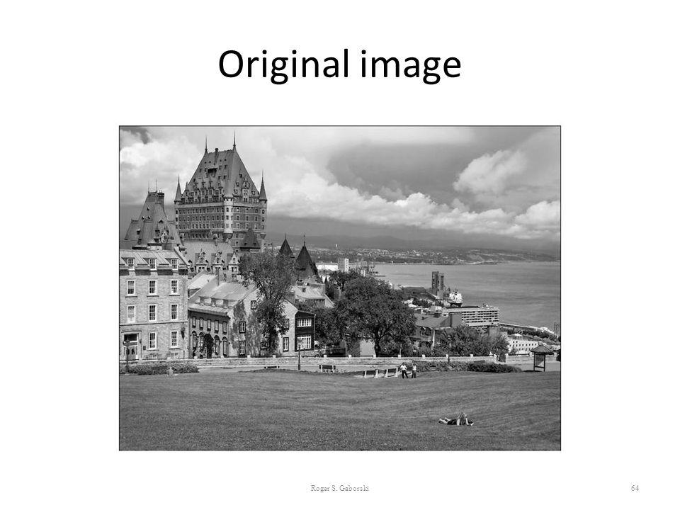 Original image 64 Roger S. Gaborski