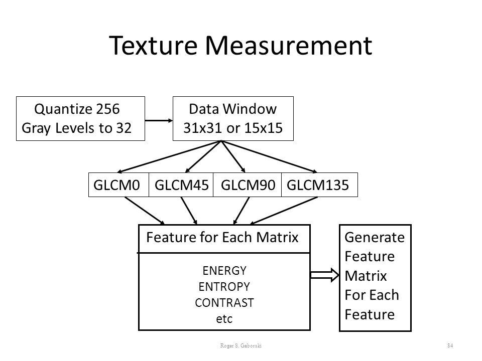 Texture Measurement 84 Quantize 256 Gray Levels to 32 Data Window 31x31 or 15x15 GLCM0 GLCM45 GLCM90 GLCM135 Feature for Each Matrix ENERGY ENTROPY CO