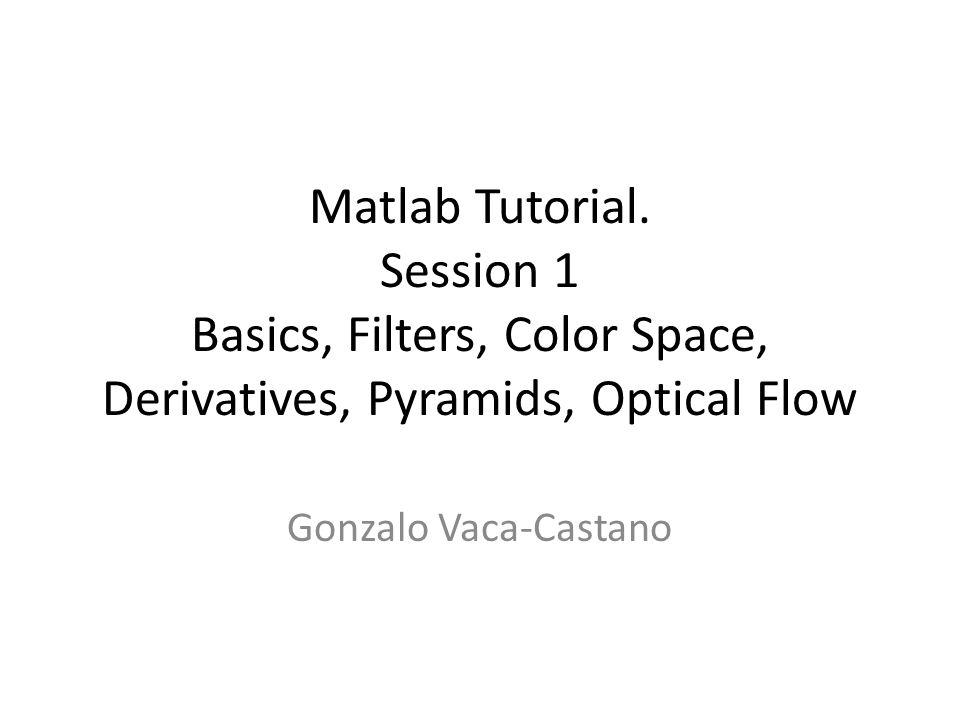 Matlab Tutorial. Session 1 Basics, Filters, Color Space, Derivatives, Pyramids, Optical Flow Gonzalo Vaca-Castano
