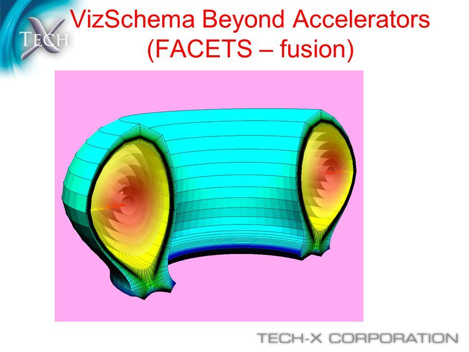 VizSchema Beyond Accelerators (FACETS – fusion)