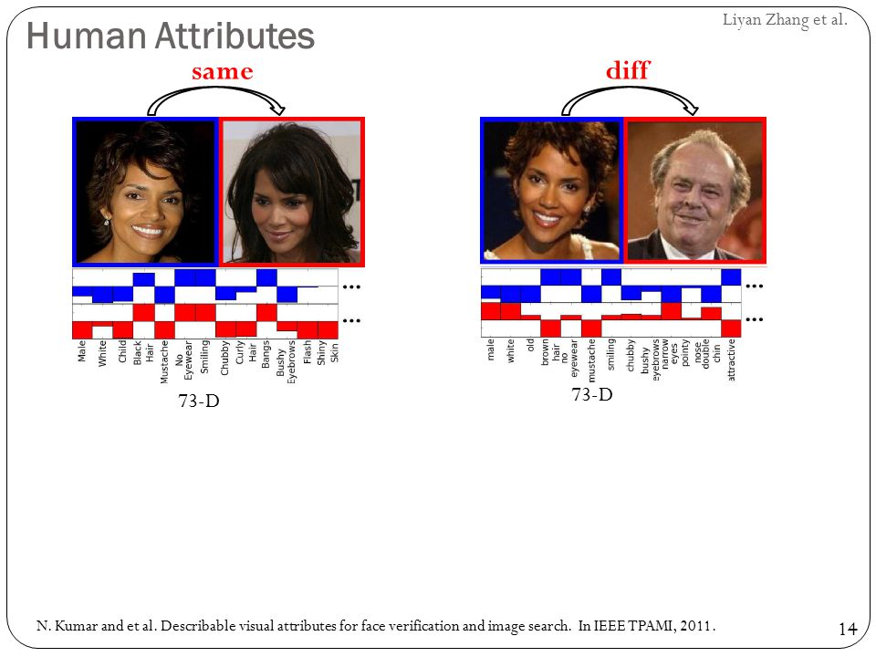 14 Liyan Zhang et al. Human Attributes samediff 73-D N. Kumar and et al. Describable visual attributes for face verification and image search. In IEEE