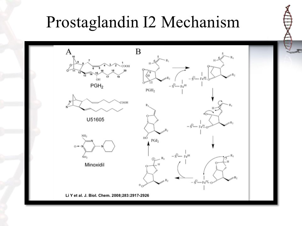 Prostaglandin I2 Mechanism
