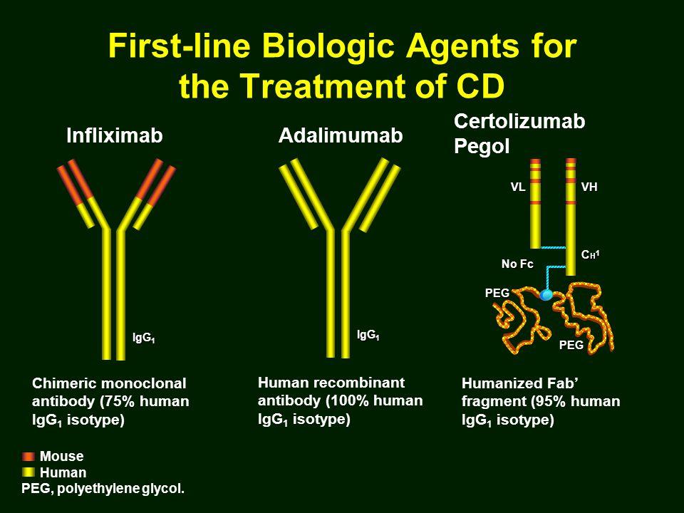 Chimeric monoclonal antibody (75% human IgG 1 isotype) Infliximab IgG 1 Mouse Human PEG, polyethylene glycol.