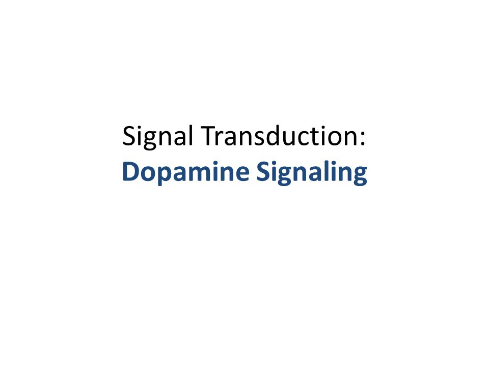 Signal Transduction: Dopamine Signaling