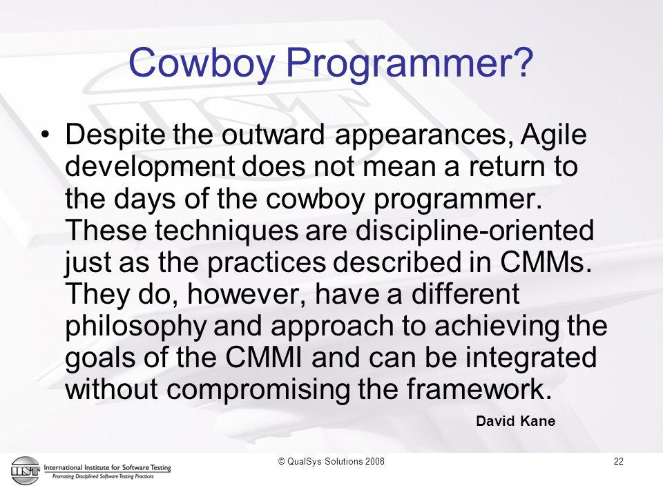 22 Cowboy Programmer.