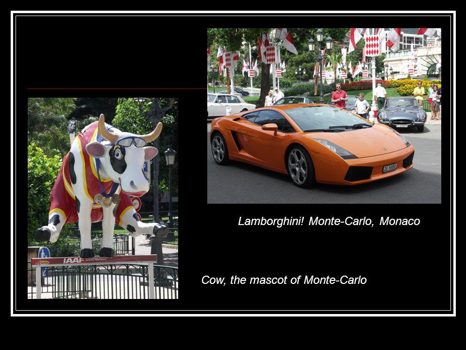 Lamborghini! Monte-Carlo, Monaco Cow, the mascot of Monte-Carlo