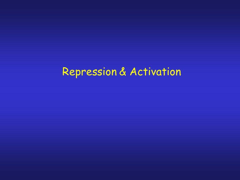 Mutant Repressor Gene Y/N Lac product.