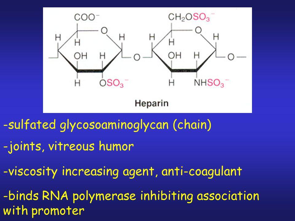 Experiment 2: 1.DNA + repressor (5-10 min) 2. + RNA polymerase (20 min) 3.