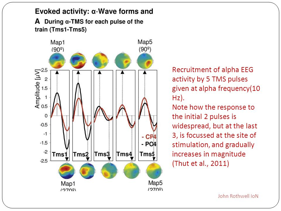 John Rothwell IoN Recruitment of alpha EEG activity by 5 TMS pulses given at alpha frequency(10 Hz). Note how the response to the initial 2 pulses is