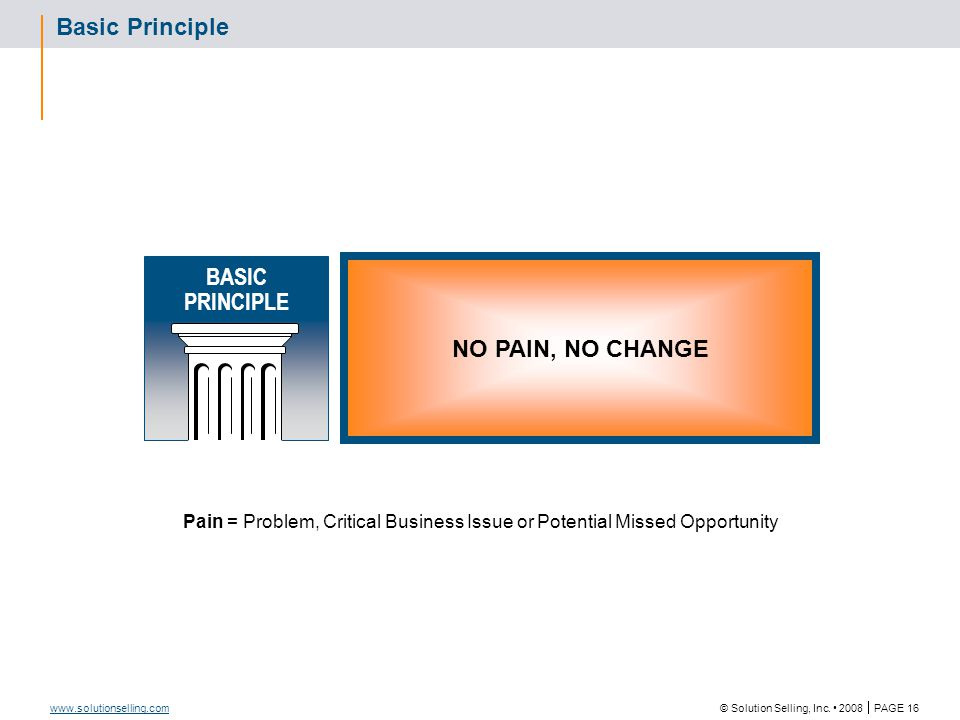 © Solution Selling, Inc. 2008  PAGE 16 www.solutionselling.com Basic Principle NO PAIN, NO CHANGE Pain = Problem, Critical Business Issue or Potentia