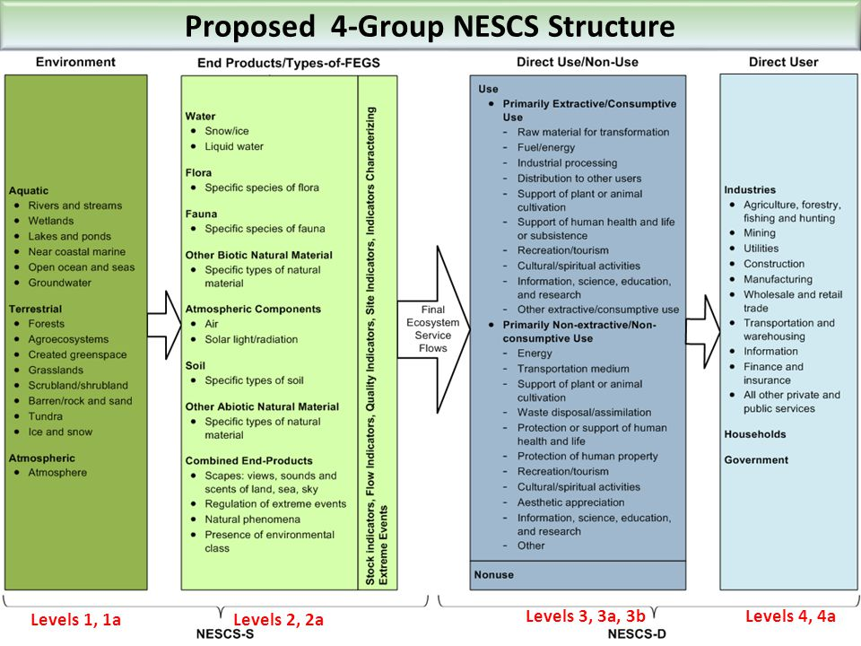 Proposed 4-Group NESCS Structure Levels 1, 1a Levels 2, 2a Levels 3, 3a, 3b Levels 4, 4a