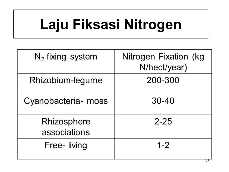 32 Mikroorganisme Fiksasi N Azobacter Beijerinckia Azospirillum Clostridium Cyanobacteria Require the enzyme nitrogenase Inhibited by oxygen Inhibited by ammonia (end product)