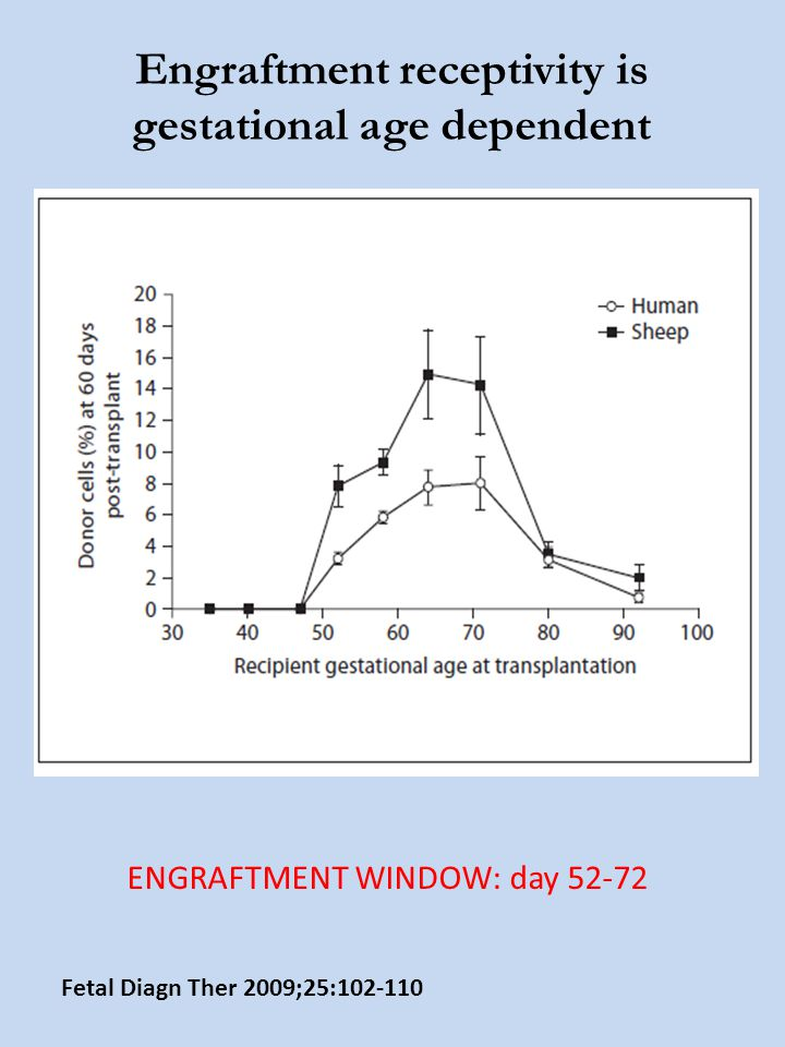 Engraftment receptivity is gestational age dependent Fetal Diagn Ther 2009;25:102-110 ENGRAFTMENT WINDOW: day 52-72