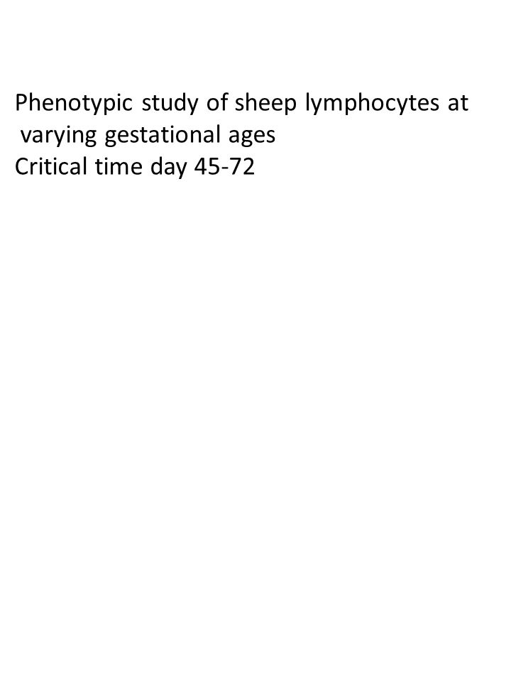 Phenotypic study of sheep lymphocytes at varying gestational ages Critical time day 45-72