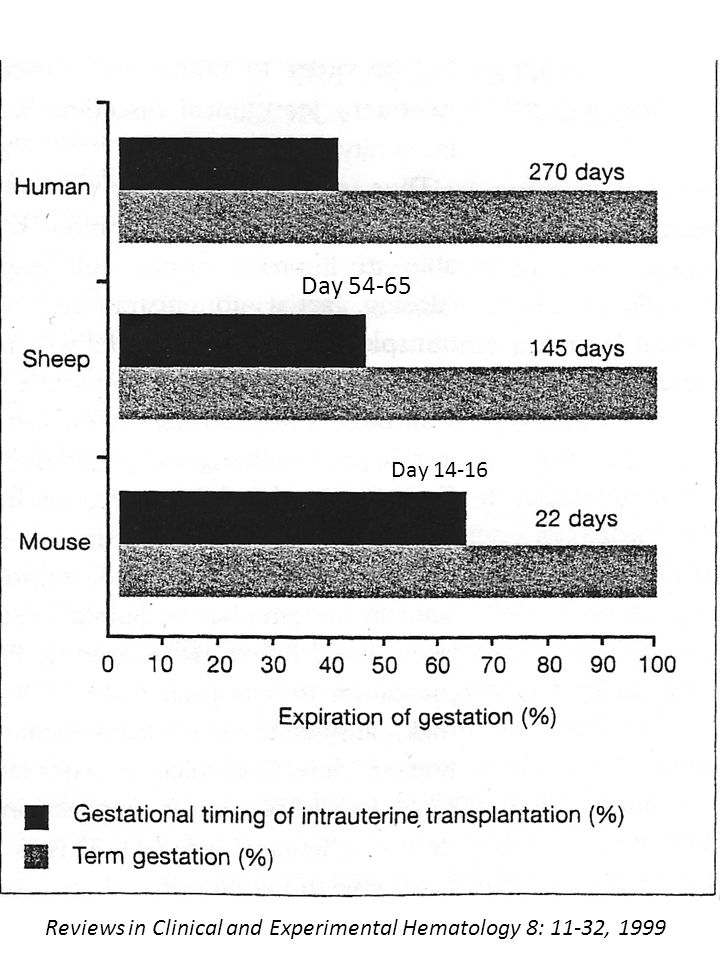 Reviews in Clinical and Experimental Hematology 8: 11-32, 1999 Day 54-65 Day 14-16