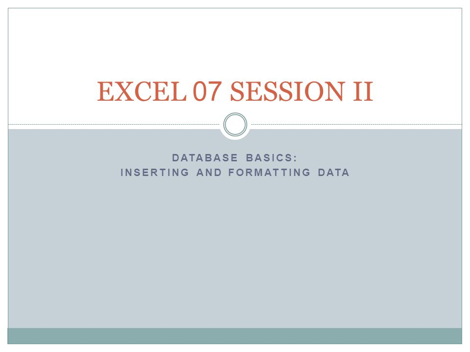 DATABASE BASICS: INSERTING AND FORMATTING DATA EXCEL 07 SESSION II