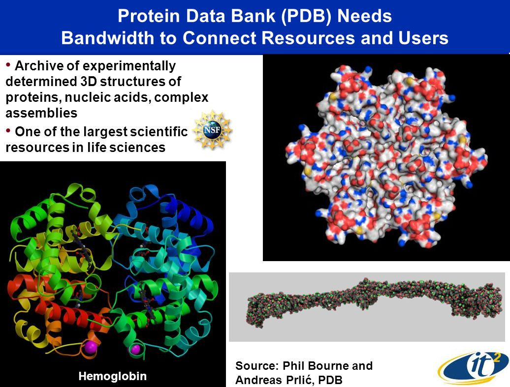 Protein Data Bank (PDB) Needs Bandwidth to Connect Resources and Users Archive of experimentally determined 3D structures of proteins, nucleic acids,