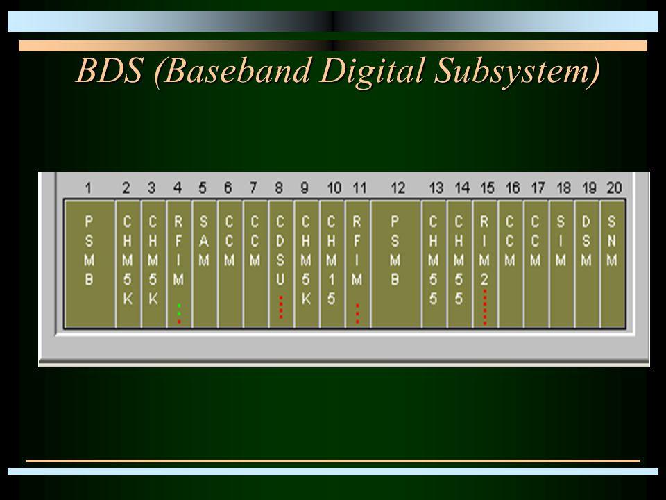 BDS (Baseband Digital Subsystem)