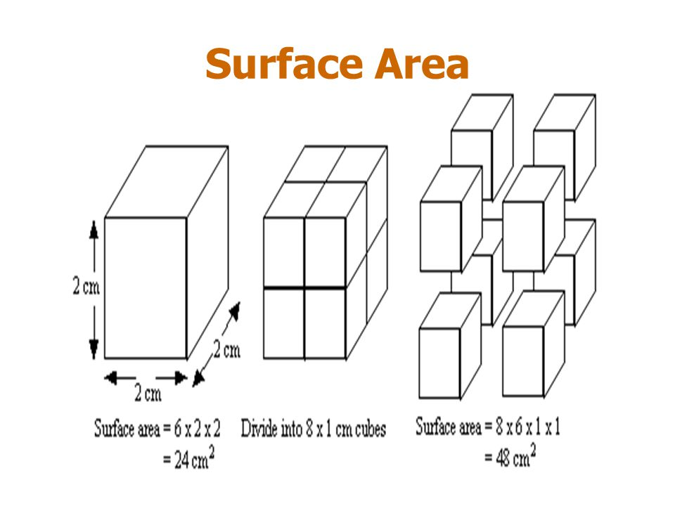 Collision Theory Collision theory explains the effect surface area on reaction rates.