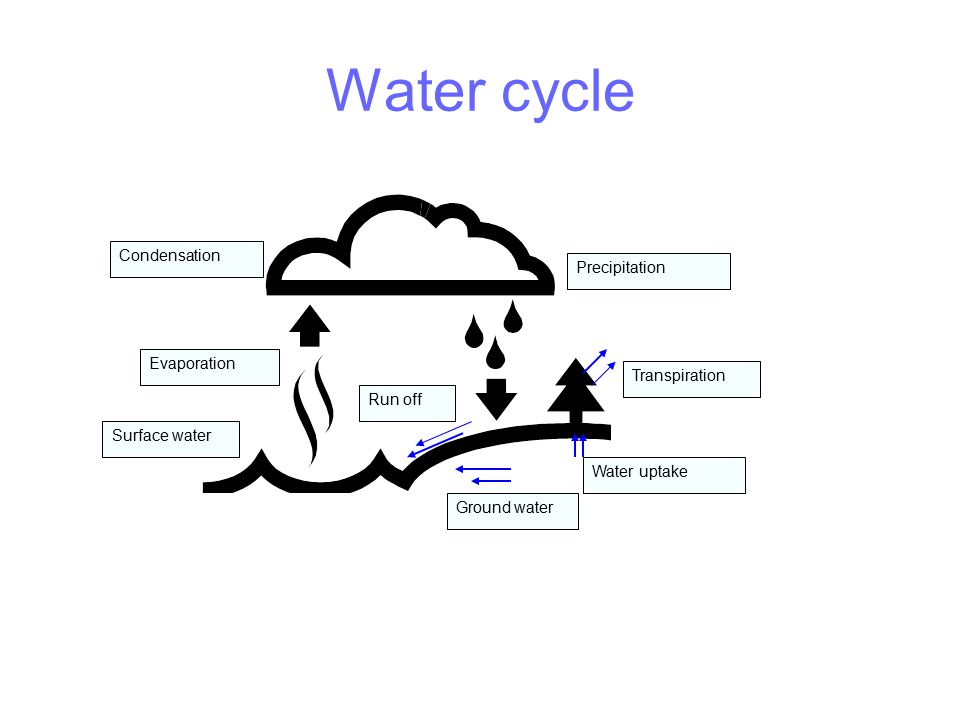 Water cycle Precipitation Transpiration Run off Evaporation Condensation Water uptake Surface water Ground water