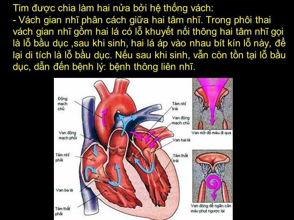 Khái quát về T I M trước Khi áp dụng phương pháp đơn giản để khai thông đường tim mạch.