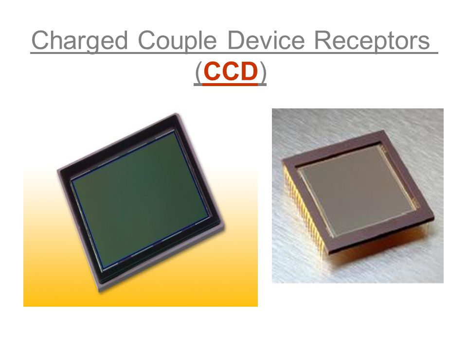 Charged Couple Device Receptors (CCD) ProductSummary.pdf   /FullFrame/KAF-16801ProductSummary.pdf