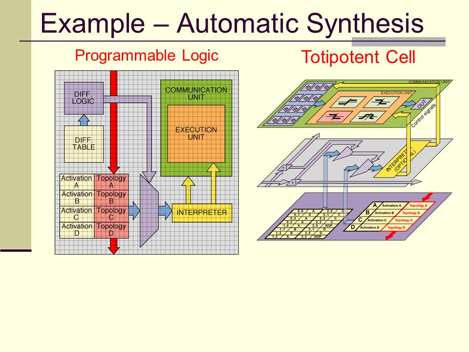 Example – Automatic Synthesis Totipotent Cell Programmable Logic