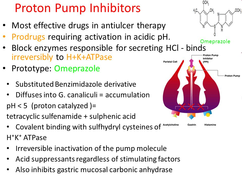 H 2 Antagonists Cimetidine, Ranitidine, Famotidine, Roxatidine, Nizatidine MOA: – Reversible competitive inhibitors of H 2 receptor – Highly selective, no action on H 1 or H 3 receptors – All phases of gastric acid secretion – Very effective in inhibiting nocturnal acid secretion (as it depends largely on Histamine ) – Modest impact on meal stimulated acid secretion (as it depends on gastrin, acetylcholine and histamine) – Volume of pepsin content and IF are also reduced – Volume reduced by 60 – 70% - anti ulcerogenic effect Adverse Effect: Gynecomastia, prolactin, CYP450, headache