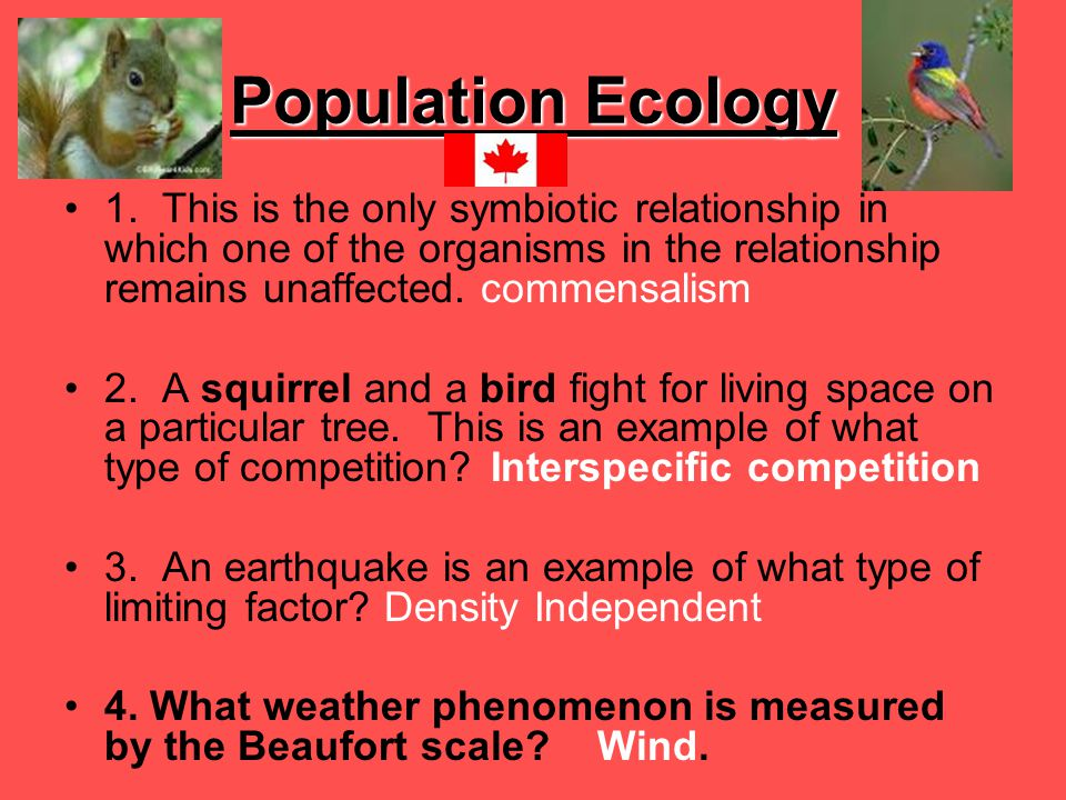 Population Ecology 1. This is the only symbiotic relationship in which one of the organisms in the relationship remains unaffected. commensalism 2. A