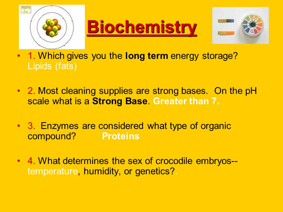 Biochemistry 1. Which gives you the long term energy storage? Lipids (fats) 2. Most cleaning supplies are strong bases. On the pH scale what is a Stro