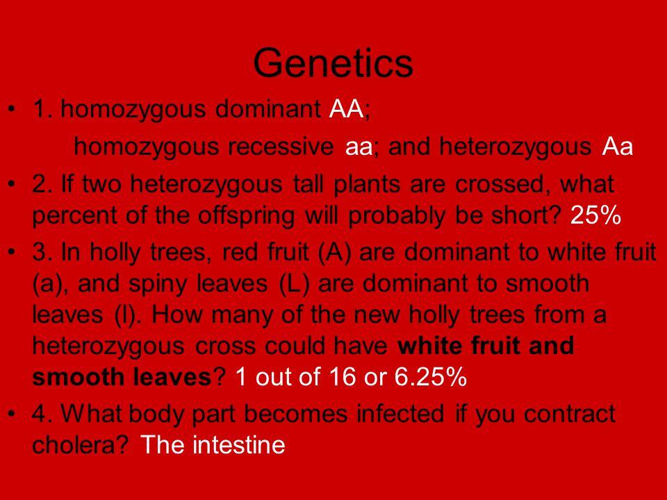 Genetics 1. homozygous dominant AA; homozygous recessive aa; and heterozygous Aa 2. If two heterozygous tall plants are crossed, what percent of the o